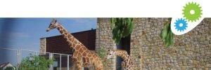 zoo-zamosc